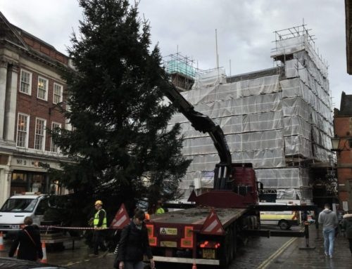 Christmas Tree – York City Centre – Case Study